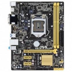 MB ASUS H81M-P PLUS H81 LGA1150 2DDRIII VGA+DVI+HDMI PCIe-16x 2*SATA3 2*SATA2 mATX